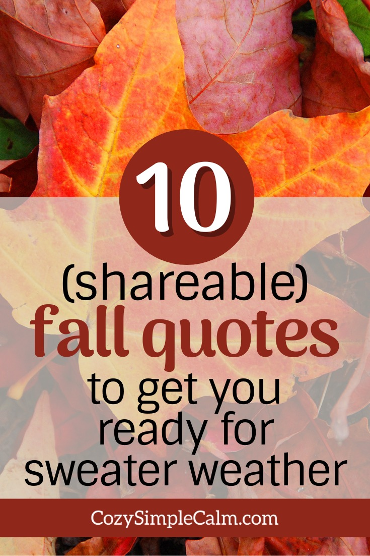 fall quotes sweater weather
