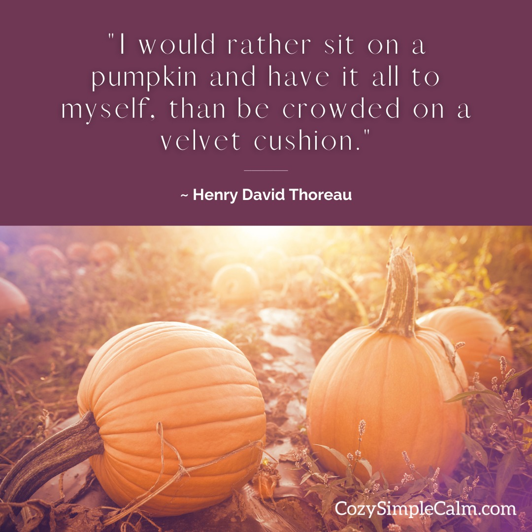 """""""I would rather sit on a pumpkin and have it all to myself, than be crowded on a velvet cushion."""" – Henry David Thoreau"""